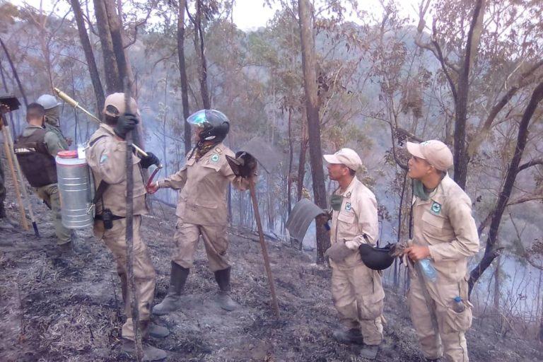 Incendios en Venezuela. Bomberos de Inparques combatiendo el fuego en el Parque Waraira Repano. Foto: Inparques.