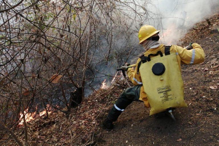 Incendios en Venezuela. Bomberos venezolanos hacen un gran esfuerzo por apagar incendios a pesar de los pocos recursos. Foto: Inparques.
