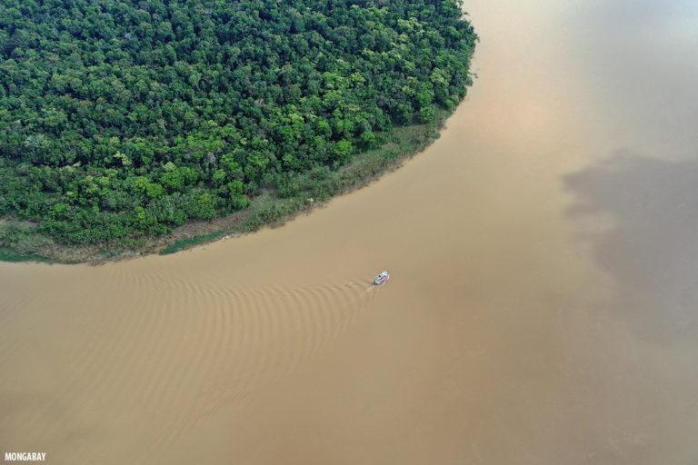Vista aérea del río Javari en el Amazonas brasilero. Foto de Rhett A. Butler.