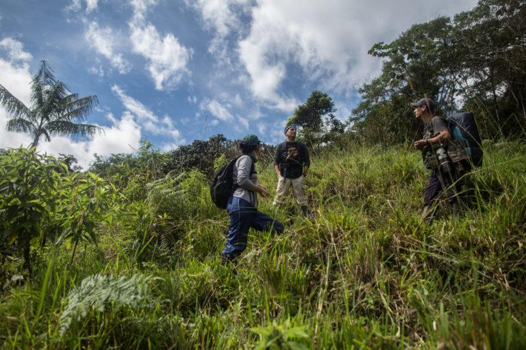 Día Internacional del Tapir Caminos difíciles y con precipicios tuvieron que sortear los equipos que instalaron las cámaras trampa. Foto: WWF.