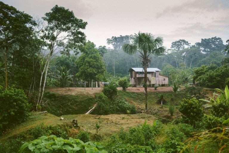 Covid19 llega a pueblos indígenas. Los indígenas de la Amazonía están cumpliendo el aislamiento obligatorio. Foto: Amazon Frontlines.