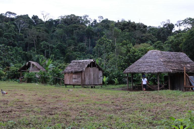 Covid19 llega a pueblos indígenas. En algunas comunidades indígenas no hay insumos de higiene para prevenir el COVID-19. Foto: Valentina Tuchie.