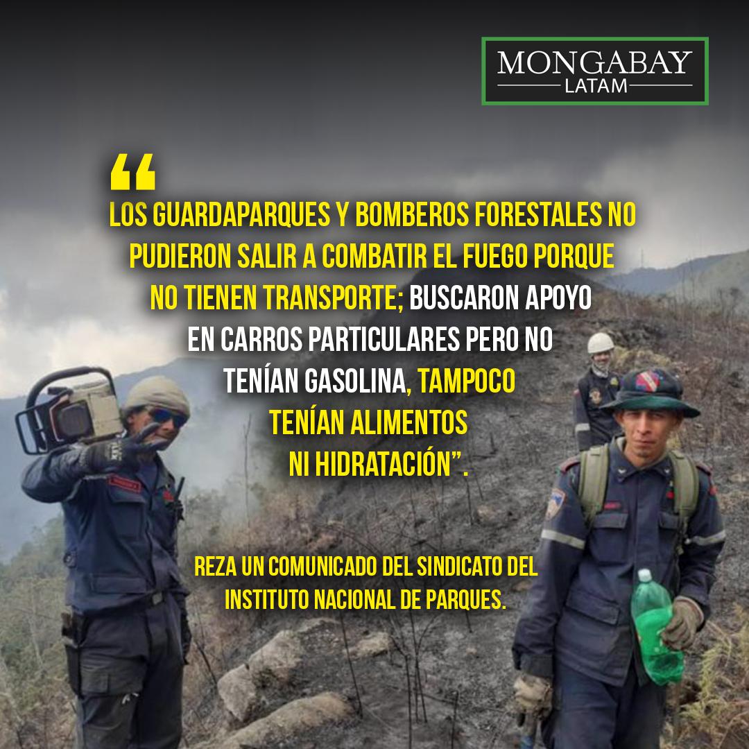 Composición de Mongabay Latam a partir de fotografía de bomberos combatiendo fuego en montañas de La Colonia Tovar. Foto: Inparques