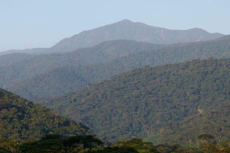 Deforestación en parques nacionales. Paisaje en el parque nacional Alto Fragua Indi Wasi en la cordillera oriental de Los Andes. Foto: Pablo Negret.