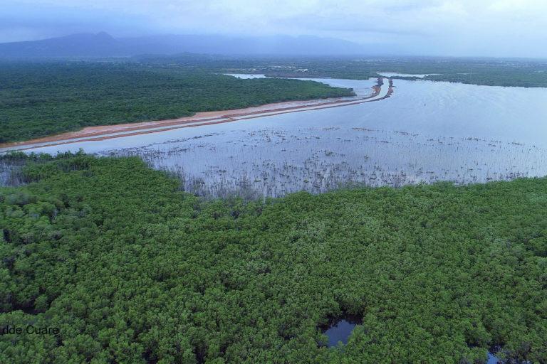 Proyecto turístico en humedal. Área del canal de navegación. Foto: Frank Espinoza.