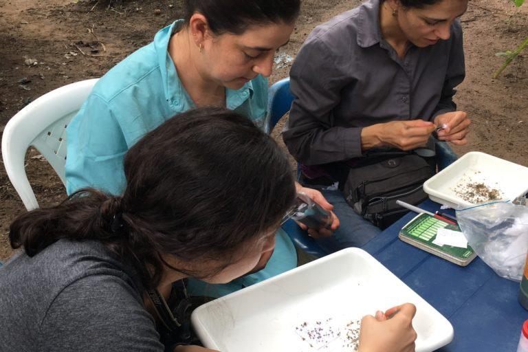 El equipo de la Universidad de Los Andes en pleno trabajo de investigacion. Camila Gonzalez.