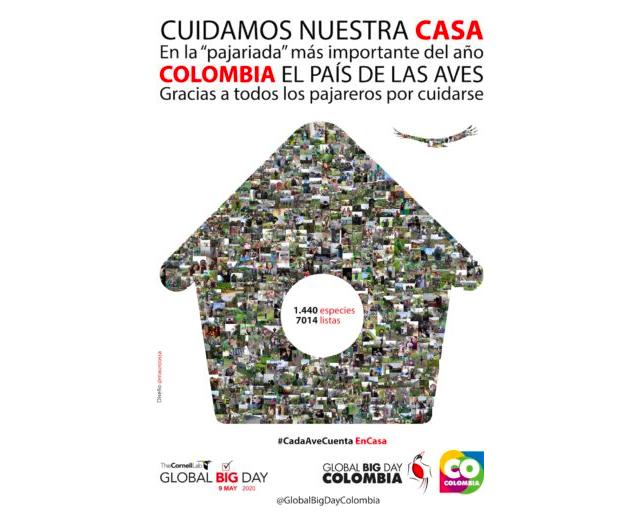 El afiche de este año del Global Big Day Colombia hace referencia a la inmovilización por el coronavirus. Foto: Mauricio Ossa.