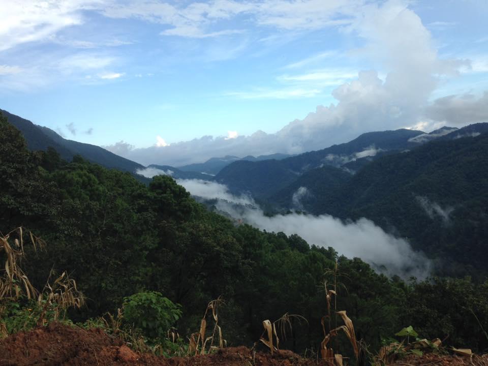 sierra de Loxicha-Oaxaca