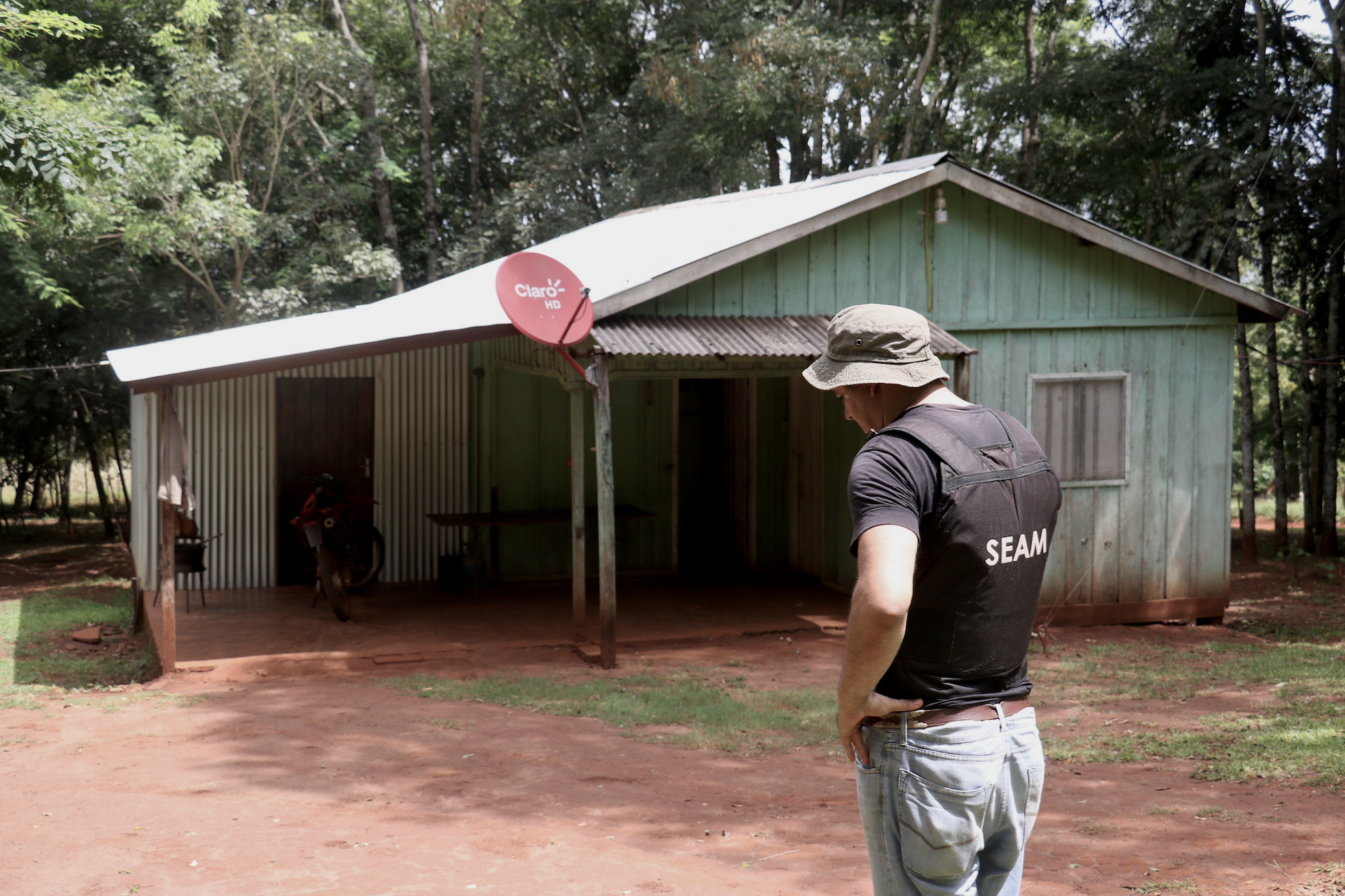 Marihuana en Bosque Atlántico de Paraguay