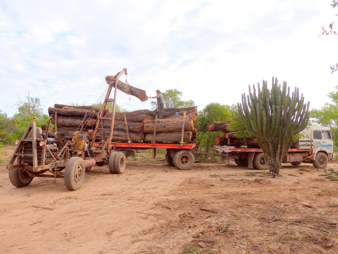 gran chaco argentina