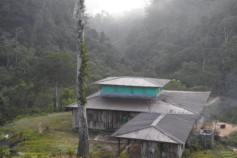 Erradicación de cultivos. En el parque regional natural Serranía de Las Quinchas viven 5346 personas. Foto: Camilo Altamar.