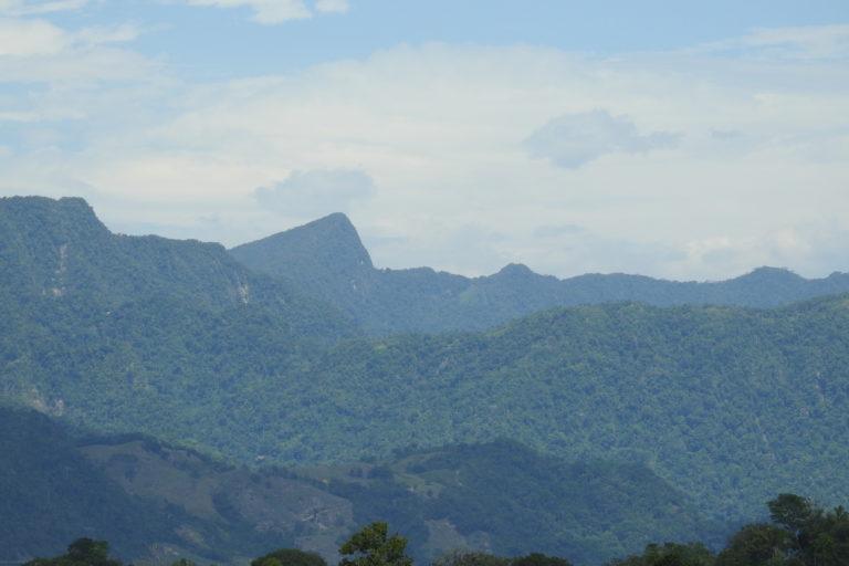 Erradicación de cultivos. La Serranía de Las Quinchas tiene una alta importancia ambiental pero ha sido zona histórica de conflicto armado en Colombia. Foto: Camilo Altamar.