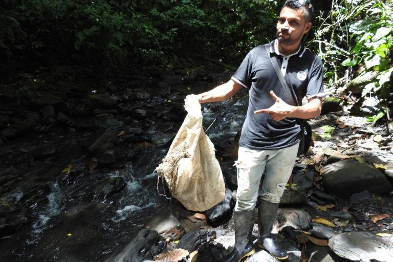 Erradicación de cultivos. Campesinos se encargan de mantener limpio el parque pues han encontrado una opción económica en el ecoturismo. Foto: Camilo Altamar.