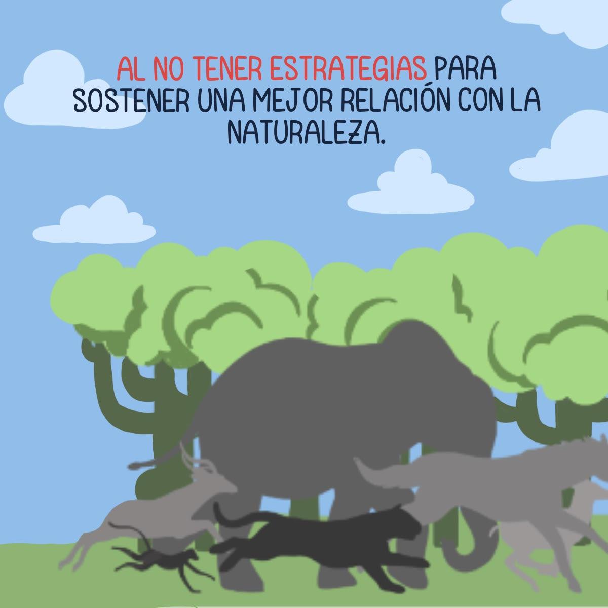 Cómic sobre murciélagos. Beneficios a los ecosistemas y amenazas a la especie. Crédito: Kipu Visual