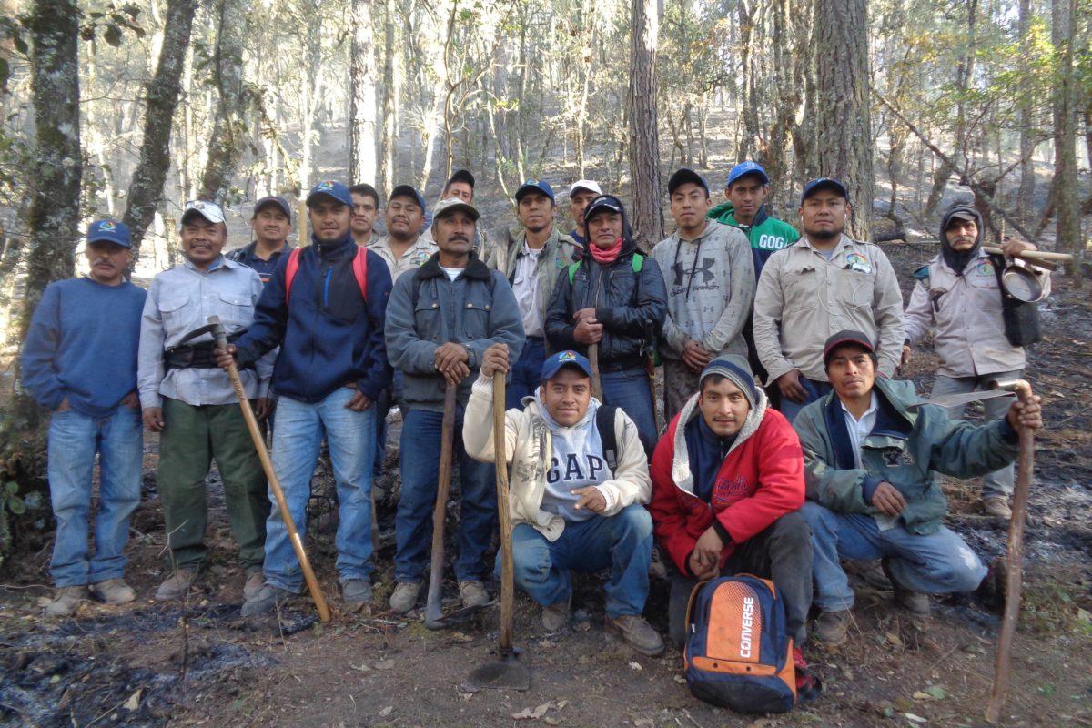 Ixtlán-MFC-Oaxaca