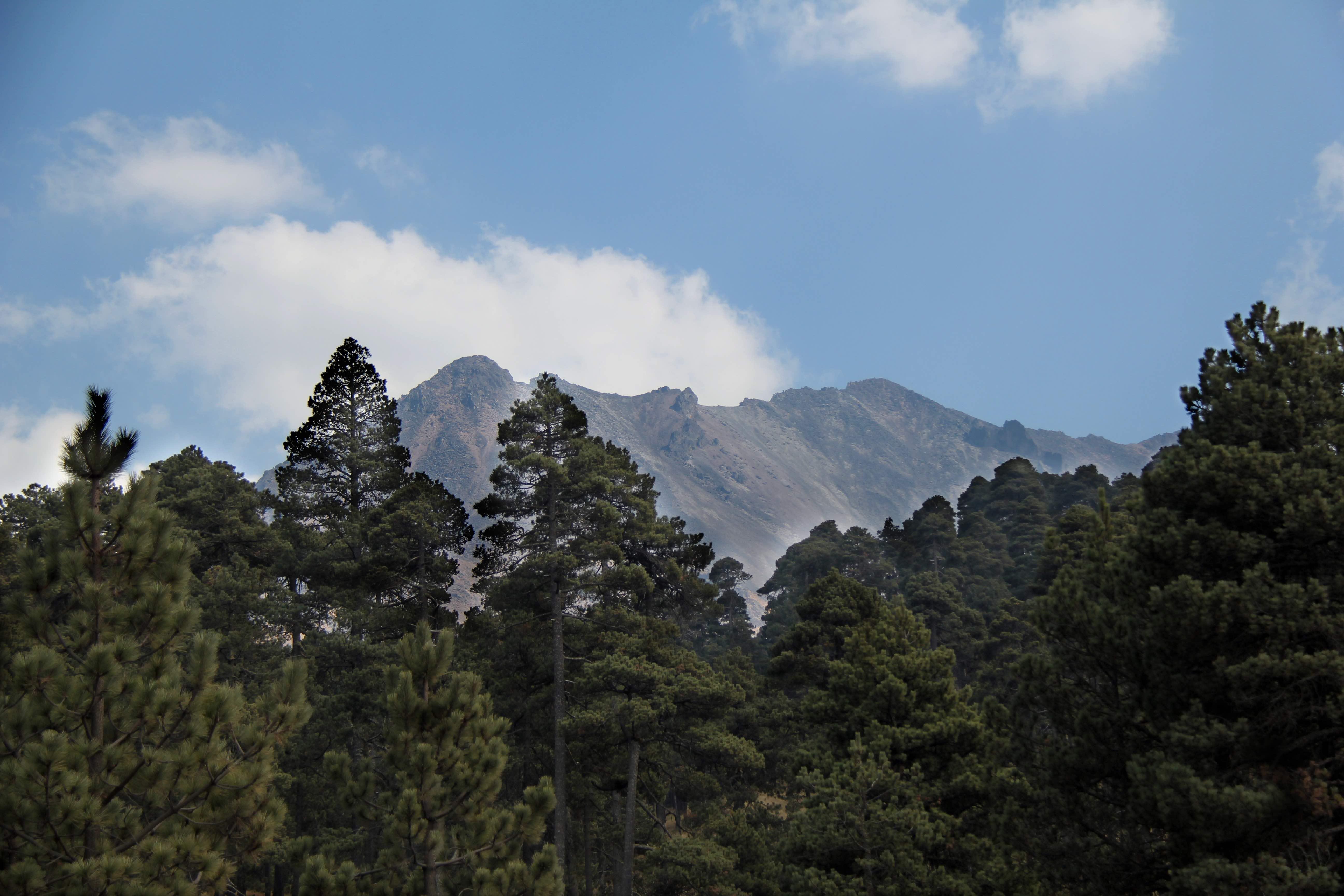 APFF Nevado de Toluca