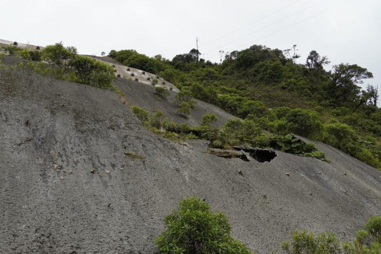 Uno de los muros de contención que hicieron, para evitar deslizamientos, tiene grietas y huecos que han permitido que la naturaleza vuelva a aparecer. Foto: María Fernanda Lizcano.