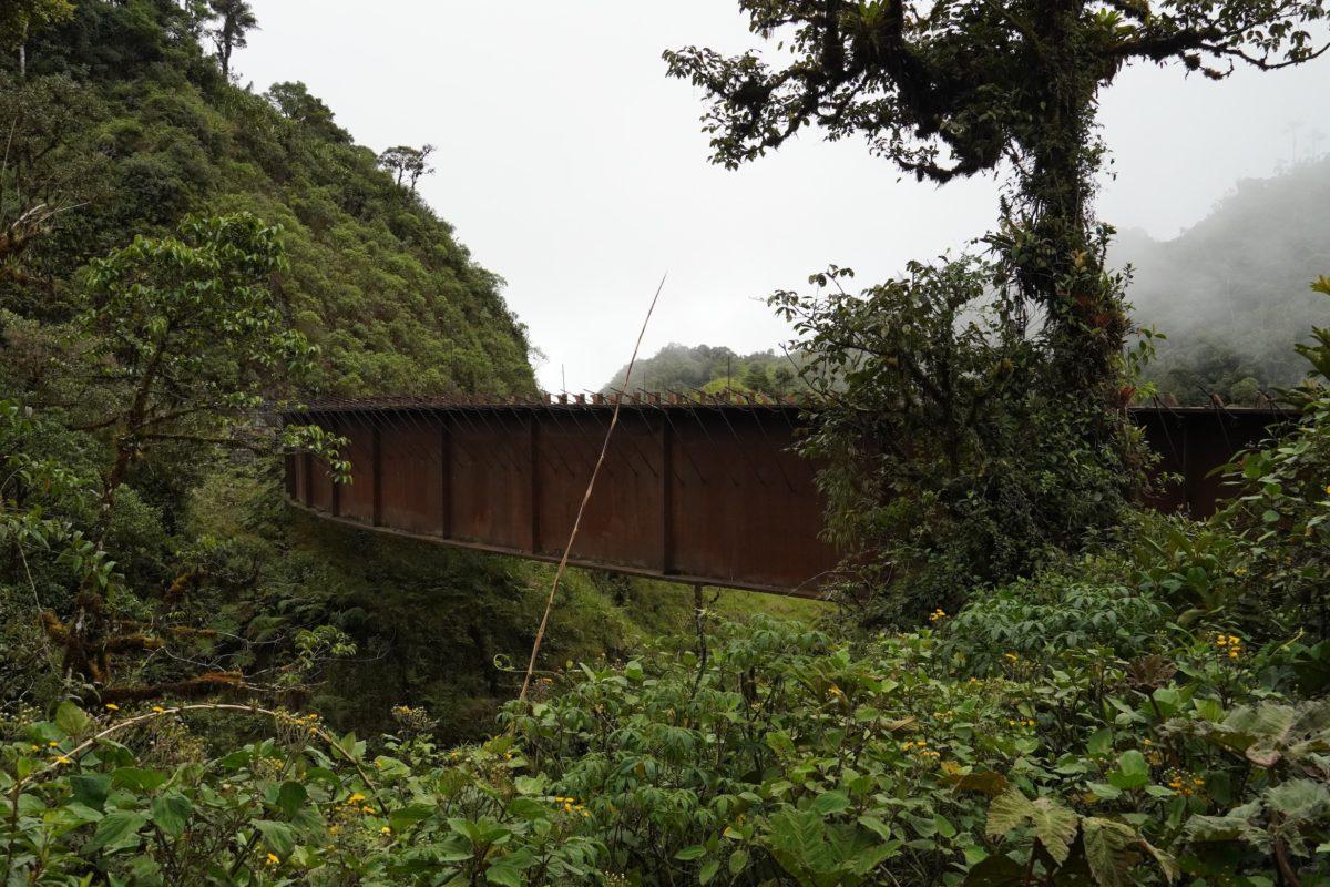 Uno de los puentes quedó a medias y está siendo devorado por el óxido. Foto: María Fernanda Lizcano.