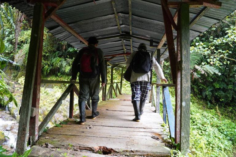 Se requieren dos días caminando a buen paso y sin mucho descanso para atravesar la reserva Reserva Forestal Protectora de la Cuenca Alta del Río Mocoa, desde San Francisco hasta Mocoa. Foto: María Fernanda Lizcano.