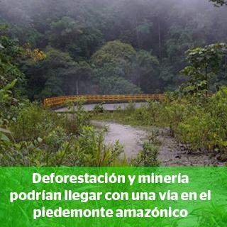 Especial: Colombia |Un elefante blanco oculto en la selva de Putumayo Foto: María Fernanda Lizcano