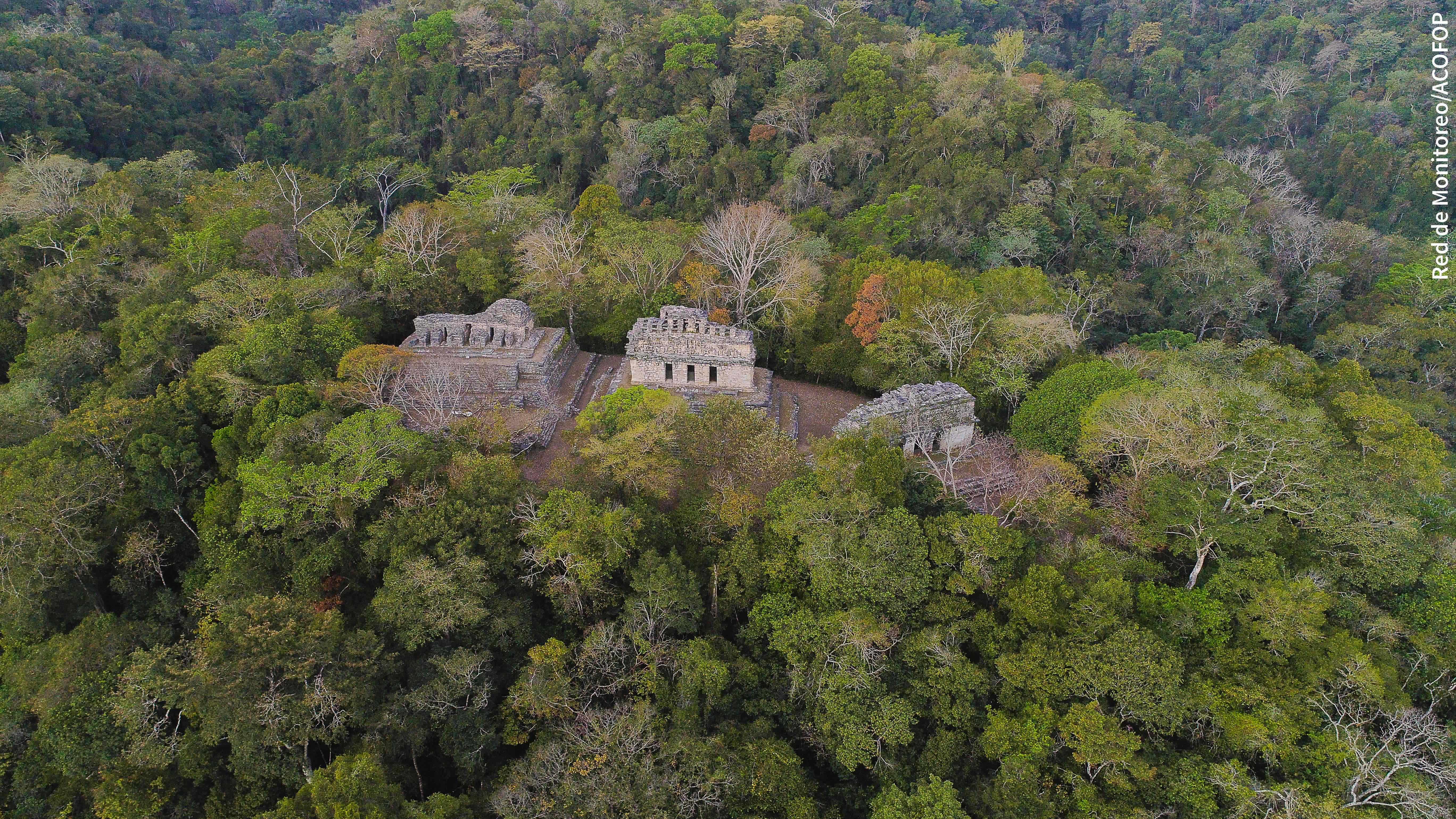 Zona arqueológica dentro de la Reserva de la Biósfera Maya