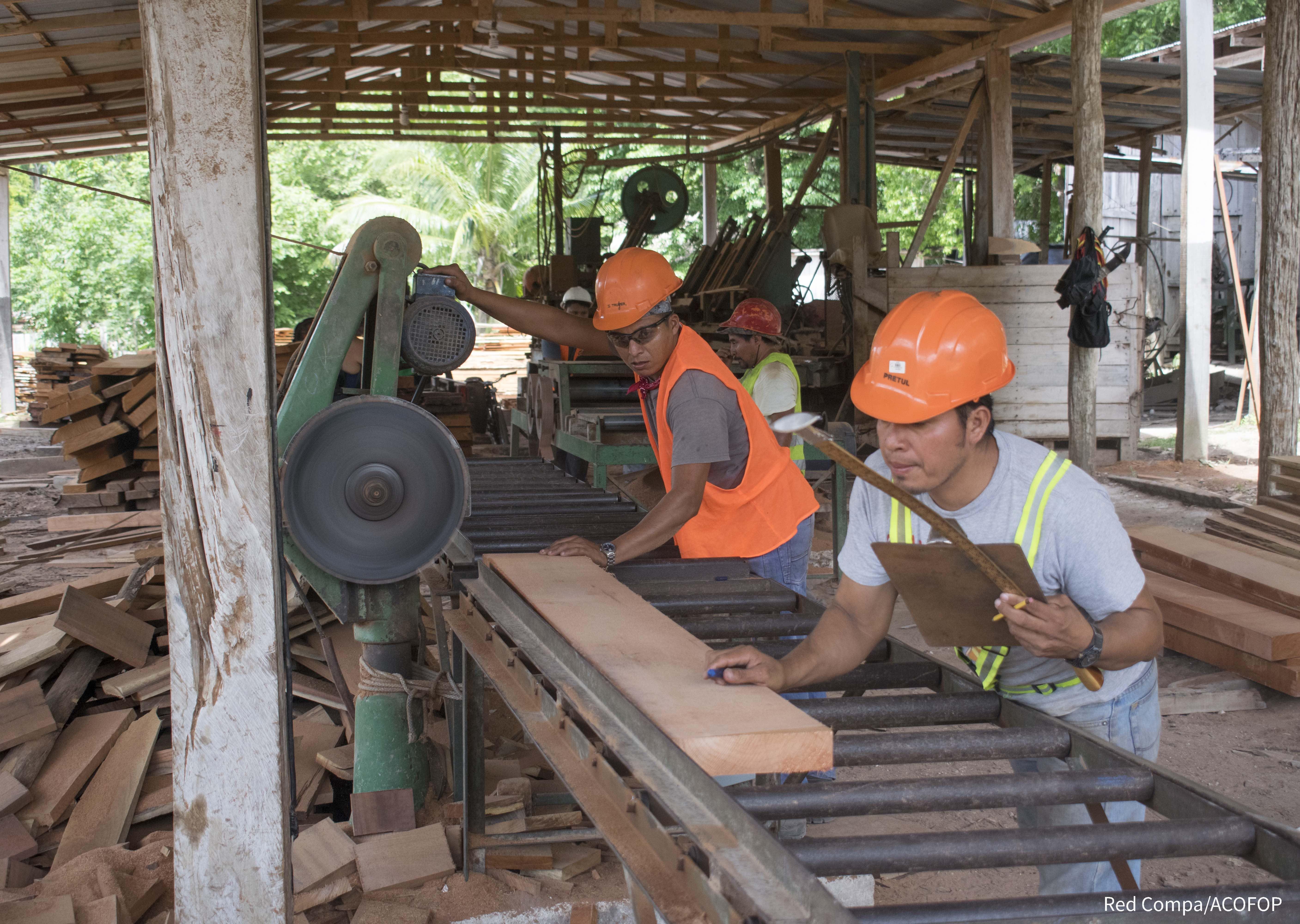 Forestería comunitaria en el Petén, Guatemala