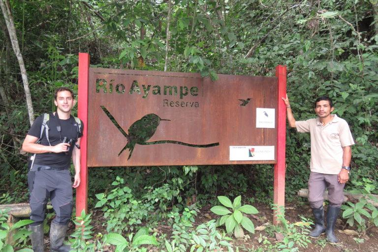 Conservación de aves. La Reserva Río Ayampe ha sido medular en la conservación del colibrí Estrellita Esmeraldeña, el segundo más pequeño del mundo y endémico del Ecuador. Foto: Cortesía Fundación Jocotoco.