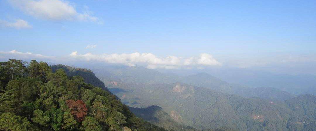 Ejido Cordón Grande, manejo forestal en Guerrero