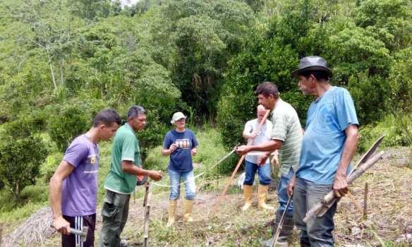 Crisis ONG Venezuela. En Canoabo, Tierra Viva desarrolla un programa de agroecoturismo con el cacao para preservar las cuencas hidrográficas. Foto: Tierra Viva.