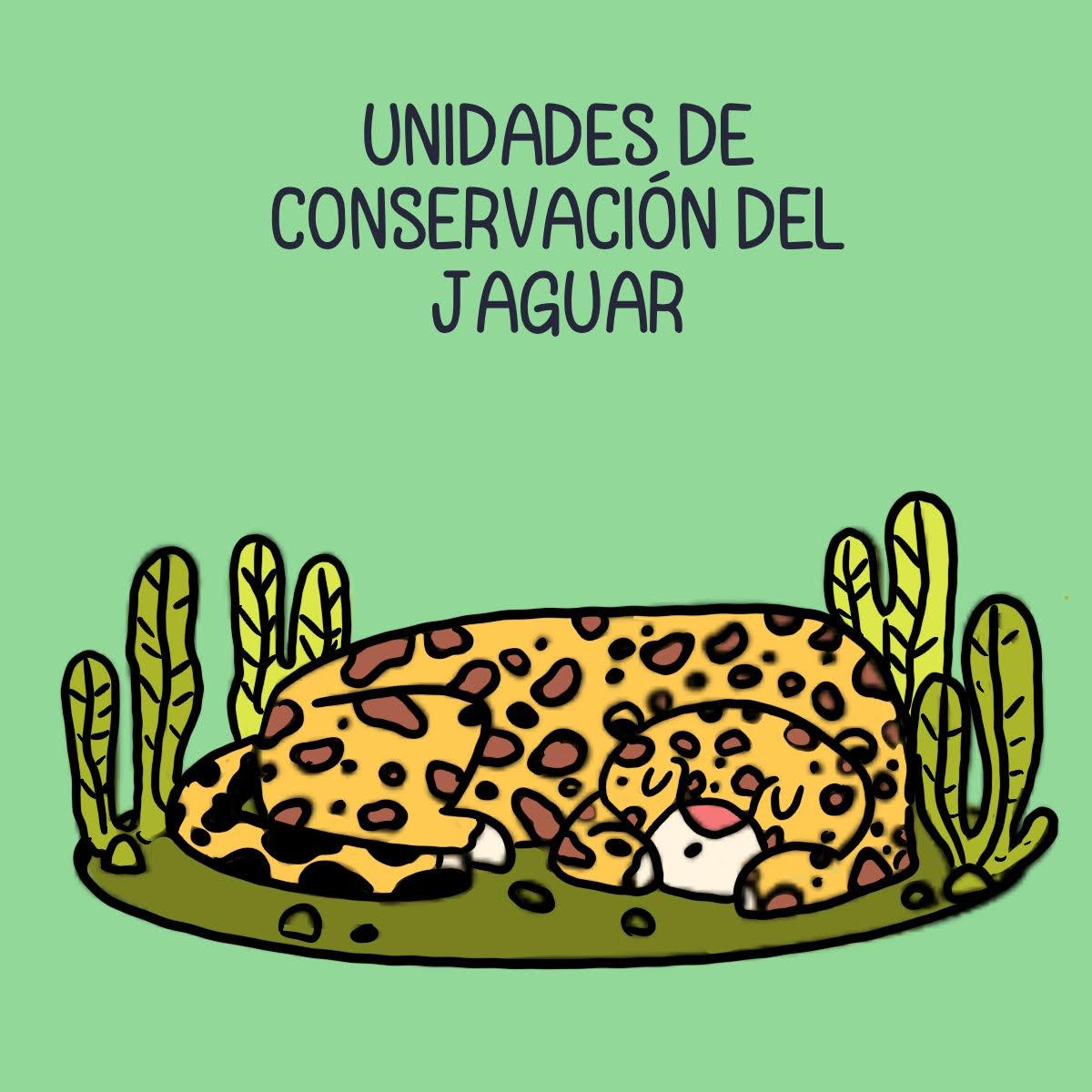 """Panel de historia gráfica """"La hota de ruta del jaguar"""". Crédito: Kipu Visual"""