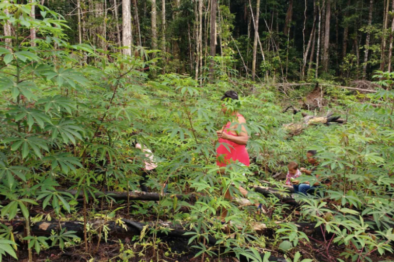 Territorios indígenas Colombia. Foto: Mayra Martínez / Gaia Amazonas