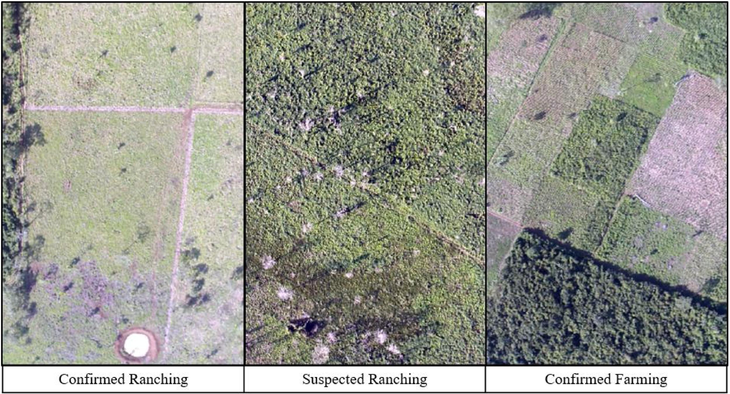 Reserva de la Biósfera Maya/imagen Paper