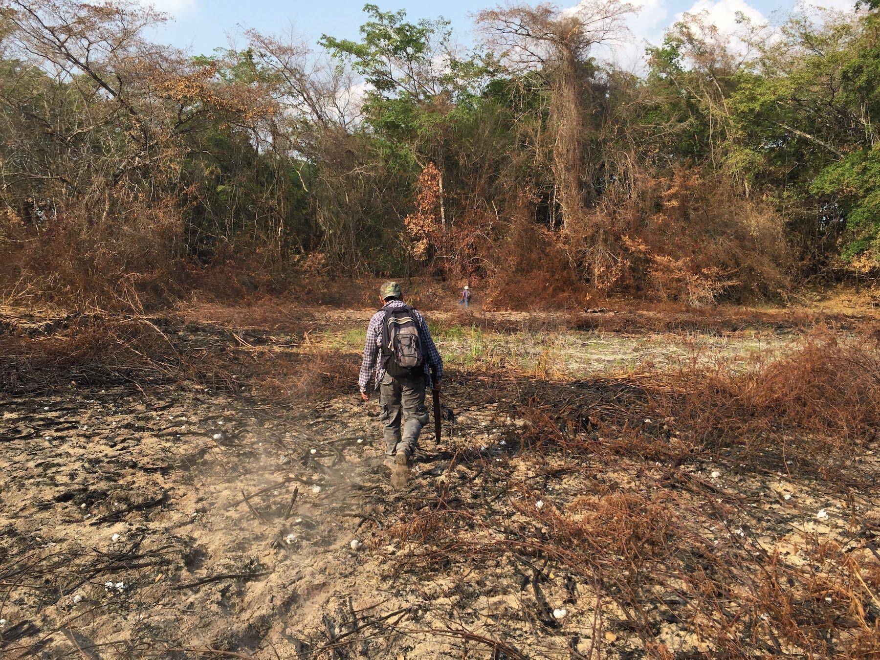 área quemada en Laguna del Tigre, Guatemala