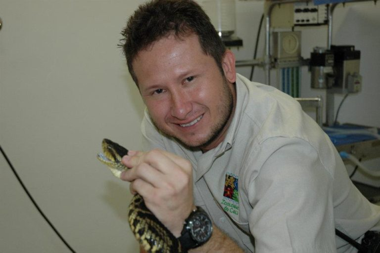 Día internacional de las serpientes. Carlos Galvis hace parte del equipo de accidentes ofídicos del Hospital Universitario del Valle (HUV)en Colombia. Foto: Carlos Galvis.