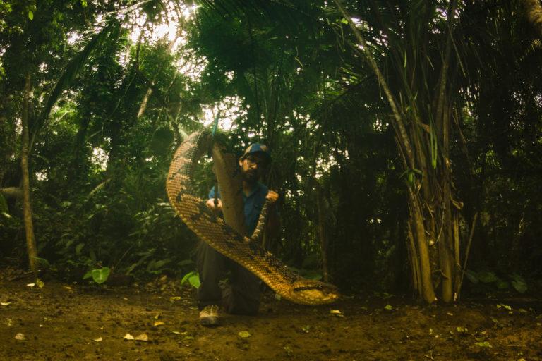 Día internacional de las serpientes. Germán Chávez con una serpiente verrugosa o shushupe. Foto: Germán Chávez.