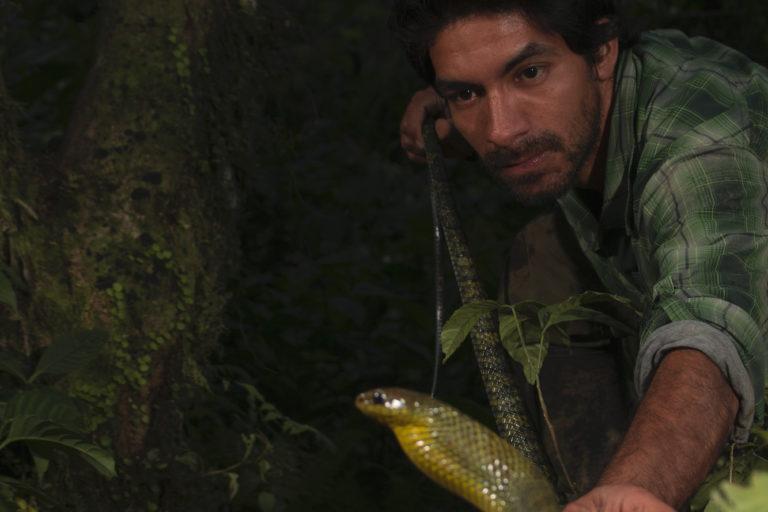 Día internacional de las serpientes. El biólogo peruano Germán Chávez en una salida de campo. Foto: Germán Chávez.