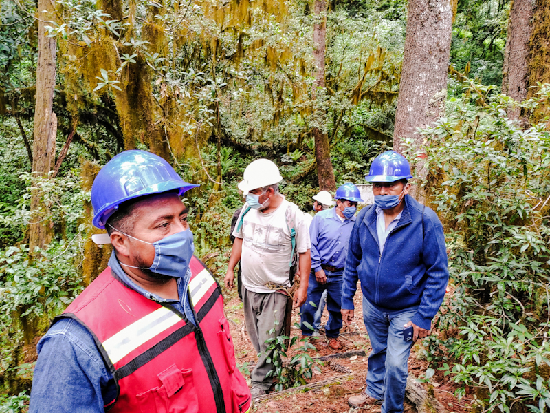 Analco-Manejo forestal comunitario