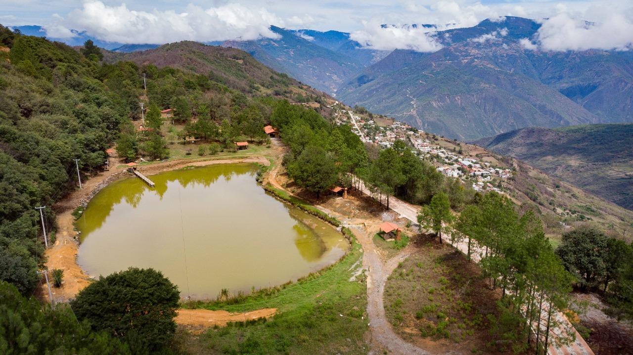 Analco-manejo forestal comunitario-Oaxaca