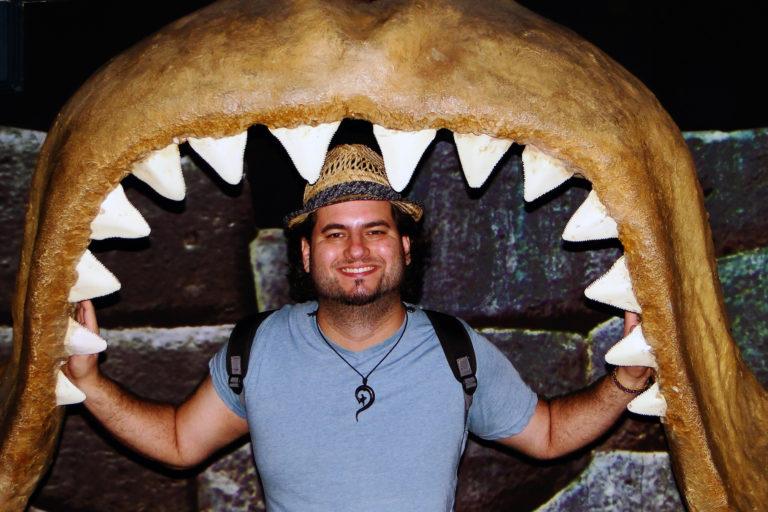 tiburones en Chile