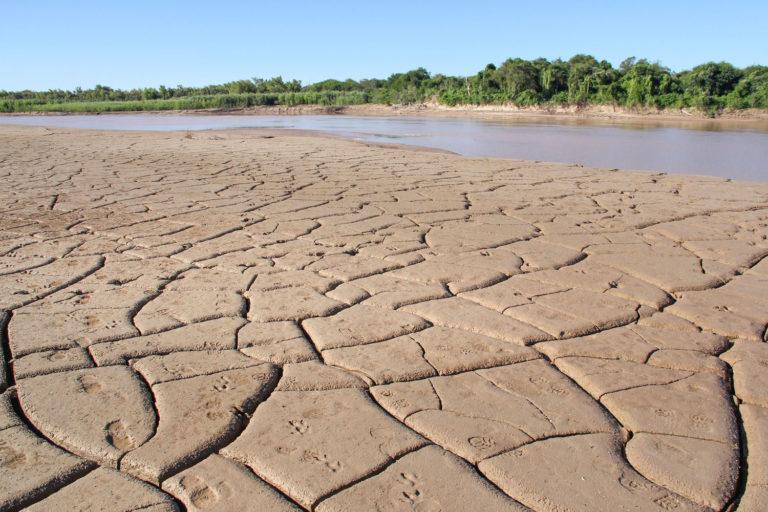 Gran Chaco argentino