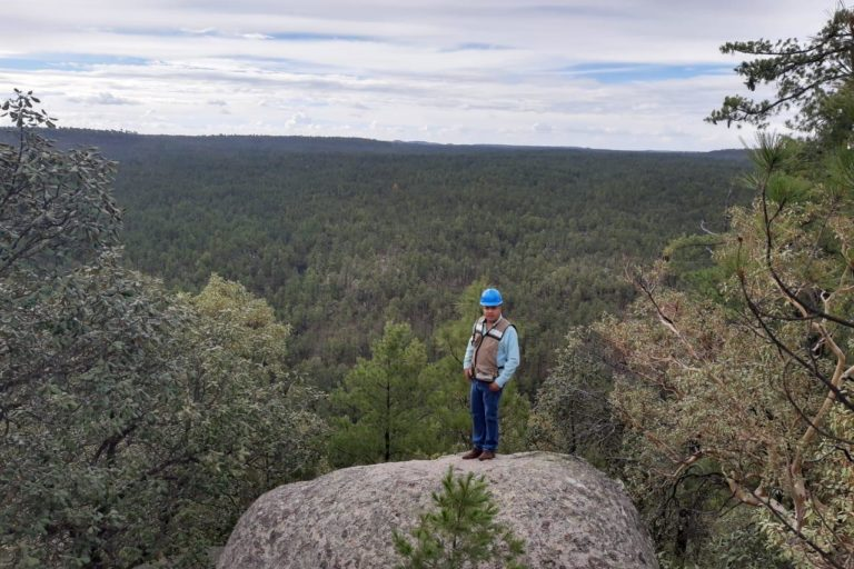 Caborachi-Chihuahua-Manejo forestal comunitario