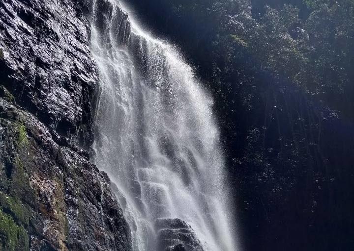 En la reserva también se capta los sonidos de la tierra, el agua y el aire (geofonía). Foto: Cortesía de Reserva Natural Los Yátaros.