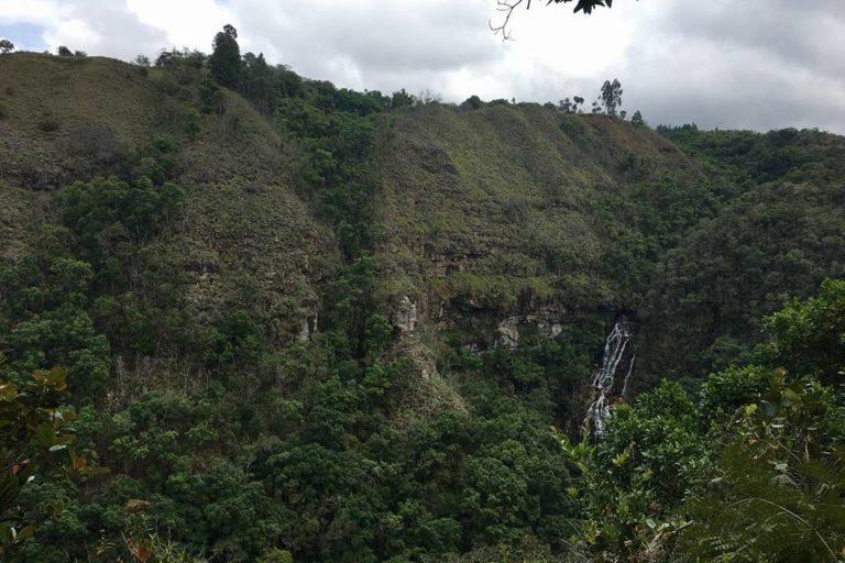 La Reserva Natural Los Yátaros se encuentra a 6 km de Gachantivá, Boyacá. Es vecina del Santuario de Fauna y Flora Iguaque y de la Serranía El Peligro, dos áreas protegidas. Foto: Cortesía de Reserva Natural Los Yátaros.