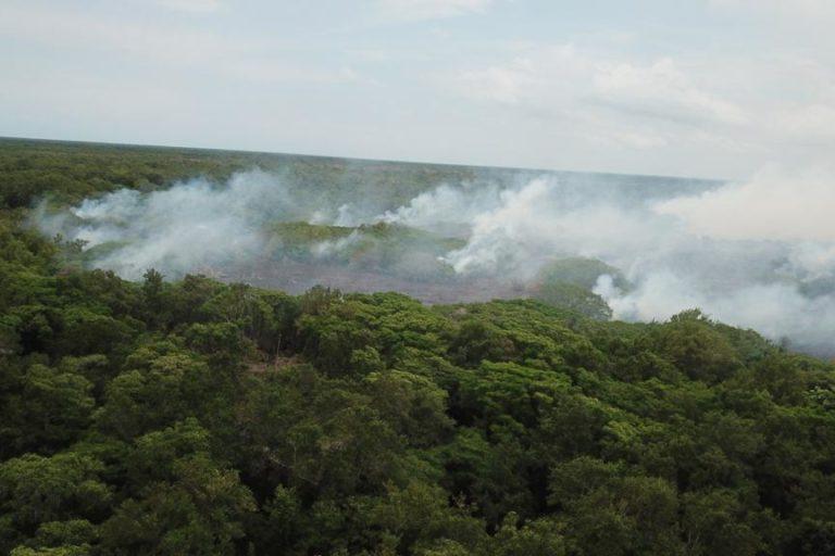 Incendio Parque Isla Salamanca. Desde el 2013 se han presentado más de 80 incendios en el Vía Parque Isla de Salamanca. Foto: Parques Nacionales Naturales de Colombia.