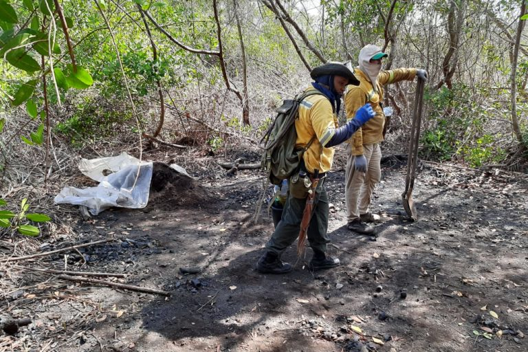Incendio Parque Isla Salamanca. Bomberos y funcionarios de Parques caminan 12 kilómetros diariamente para llegar al foco del incendio. Foto: Parques Nacionales Naturales de Colombia.