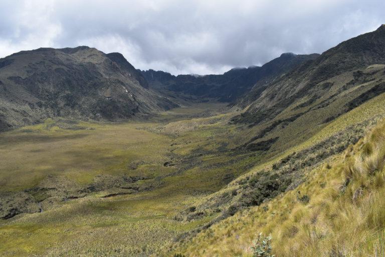 Nueva área protegida Ecuador. El área protegida Ichubamba Yasepan protege casi 5000 hectáreas de páramos. Foto: Cooperativa Ichubamba Yasepan.