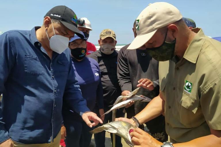 Derrame de petróleo en Venezuela. El ministro Oswaldo Barbera ha insistido en que no hay afectación ambiental. Foto: Ministerio de Ecosocialismo de Venezuela.