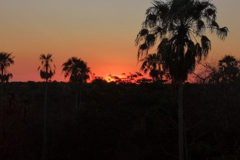 incendios forestales Atardecer en el Chaco, Bolivia. Foto: Fundación Nativa.
