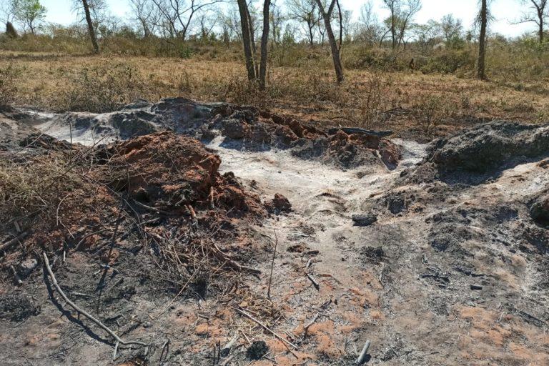Los incendios forestales en Bolivia ya han arrasado alrededor de 100 mil hectáreas. Foto: Fundación Nativa.