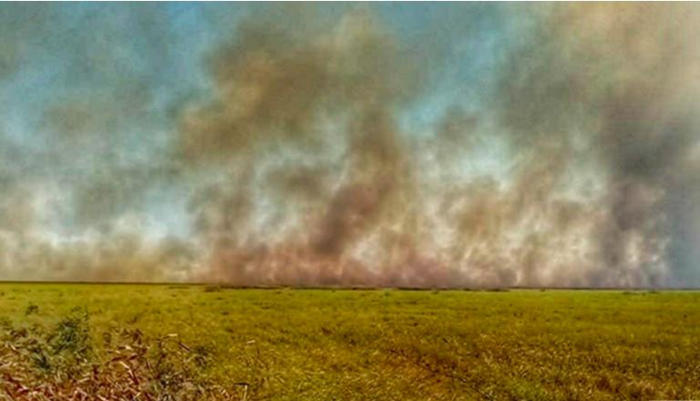 Incendio del 22 de julio en el Parque Nacional Otuquis. Foto: Alberto Bazán.